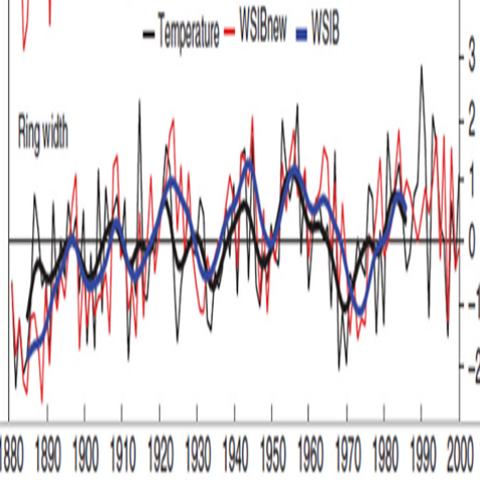 New Data from Hantemirov | Climate Audit